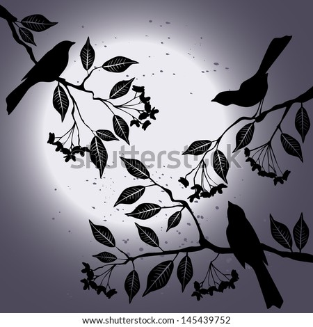 Birds on the branch during summer's night - stock vector