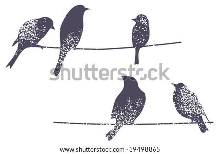 Birds on the branch. Vector illustration. - stock vector