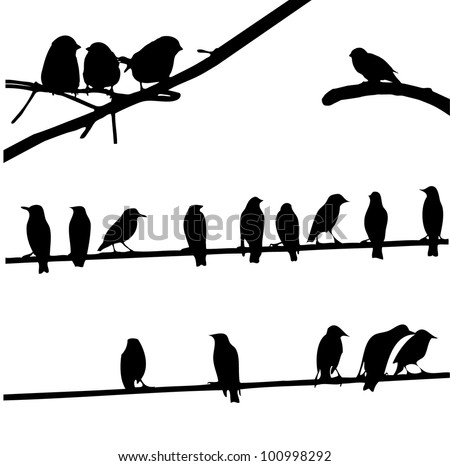 Birds on Wires, silhouette set - stock vector