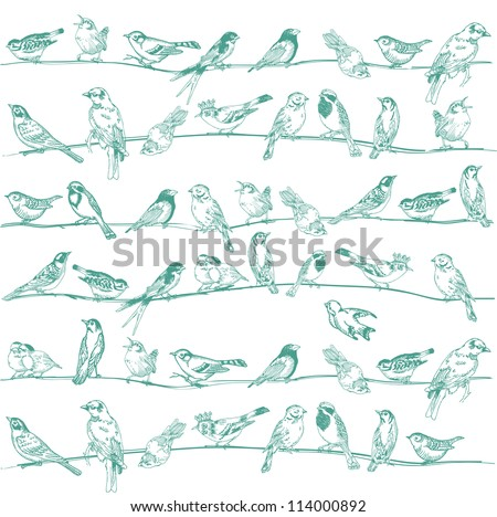 Birds Seamless Background - for design and scrapbook - in vector - stock vector
