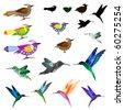 Birds set - stock vector