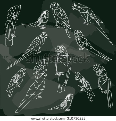 Birds-set of birds low poly chalkboard design isolated. Sun,Bourke,Budgerigar pink blue,Rose ringed parakeet.Cock han gang-gang.Major Mitchell,White umbrella,Galah cockatoo.Corella.  - stock vector