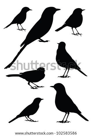 Birds Silhouette - 7 different vector illustrations - stock vector