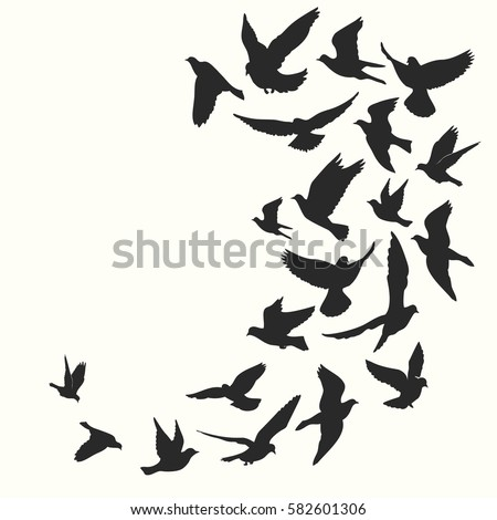 bird silhouette stock images  royalty free images bird silhouette free vector bird nest silhouette vector