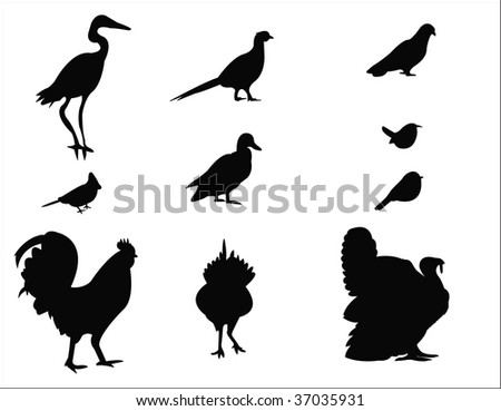birds silhouettes - stock vector