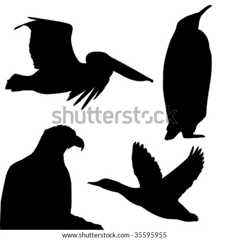 Birds silhouettes on white background - vector - stock vector