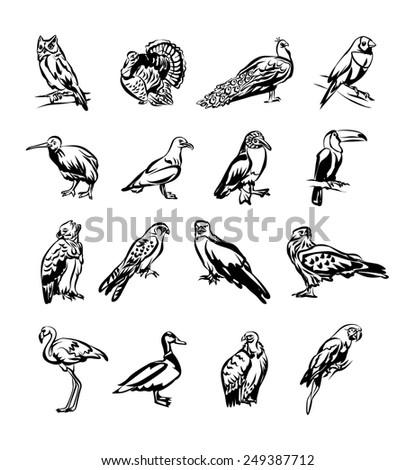 Birds vector black doodle icon set - stock vector