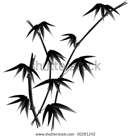 black and white bamboo illustration - stock vector