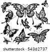 Black and white butterflies - stock photo