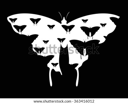 Black and white butterflies. Vector background. Abstract. - stock vector