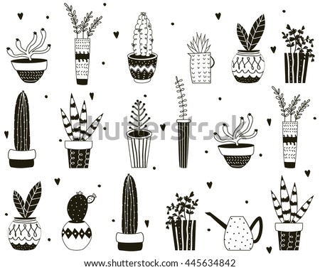 house plants drawing. black and white cartoon cactus pattern hand drawn succulent ornament collection of cute house plants drawing