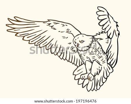 Black and white contour illustration of a flying owl  - stock vector