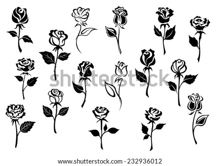 Black and white elegance roses flowers set for any floral design or love concept - stock vector