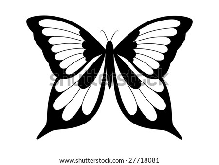 Black and white elegant shape of butterfly - stock vector