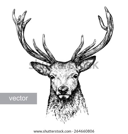black and white engrave isolated vector deer - stock vector
