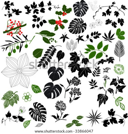Black and White Floral Design Elements - stock vector