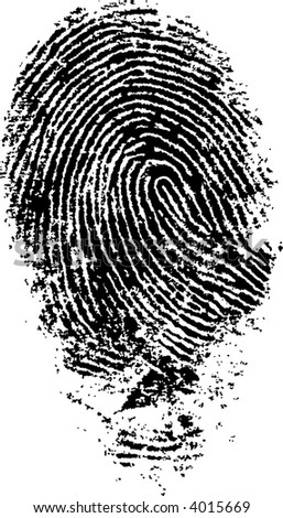 Black and White Vector Fingerprint - Very accurately scanned and traced ( Vector is transparent so it can be overlaid on other images, vectors etc.) - stock vector
