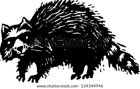 Black and white vector illustration of a raccoon