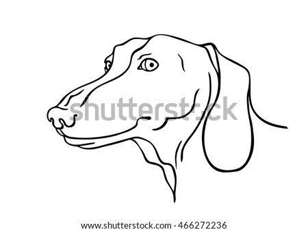 Black and white vector sketch of a smiling Dachshund's face