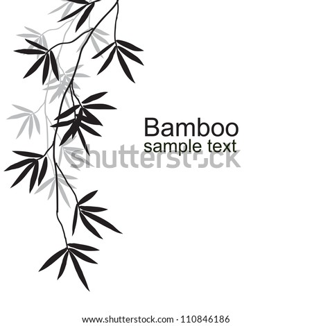 Black bamboo branches on a white background