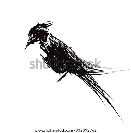 Black bird - stock vector