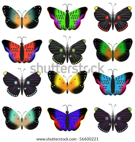 Black butterflies with bright stains. Vector illustration