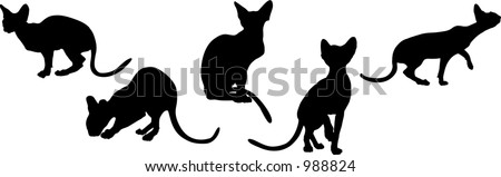 Black cats in various poses - stock vector
