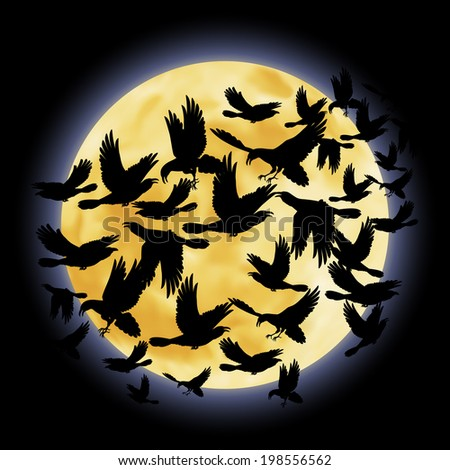 Black crows flying on the background of a full moon night - stock vector