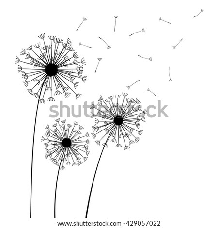 Black dandelion on white - stock vector