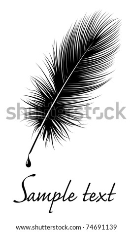 Black feather on white background with space for text. - stock vector
