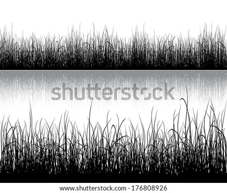 Black grass isolated on white background. Vector. - stock vector