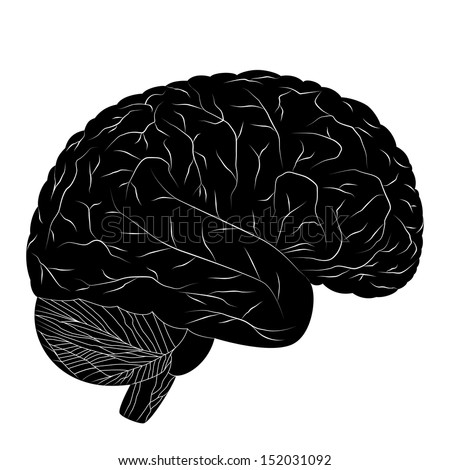 Black human brain isolated on white background. Vector EPS10. - stock vector