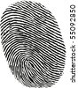 black ink fingerprint on white background in vector - stock photo