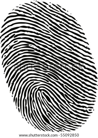 black ink fingerprint on white background in vector - stock vector