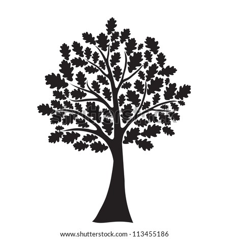 black oak tree, stylized, vector for design - stock vector