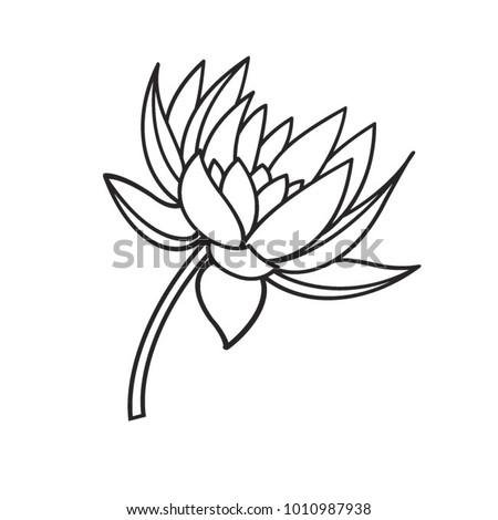 Black outline lotus flower vector drawing stock vector 2018 black outline lotus flower vector drawing mightylinksfo