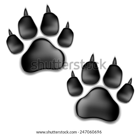 black pads of a cat with claws. traces of a kitten. Isolated On White Background. Vector Illustration. - stock vector