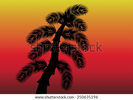 Black palm on the sunset background