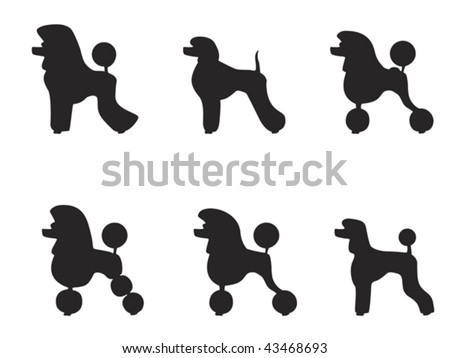 Poodle Head Silhouette Black poodle clipped in