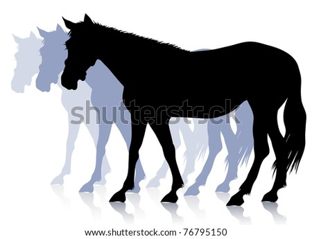 Black silhouette of a horse, which quietly goes forward.