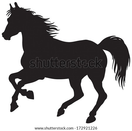 Paint Horse Silhouette Black Silhouette of Horse