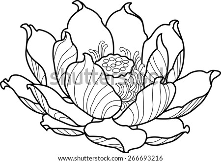Black silhouette outline lotus. Vector tattoo illustration - stock vector