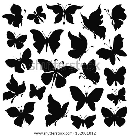 black silhouettes butterflies on white background - stock vector