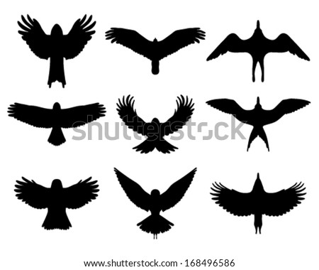 Hawk Flying Stock Photos, Royalty-Free Images & Vectors ... Flying Hawk Silhouette Vector
