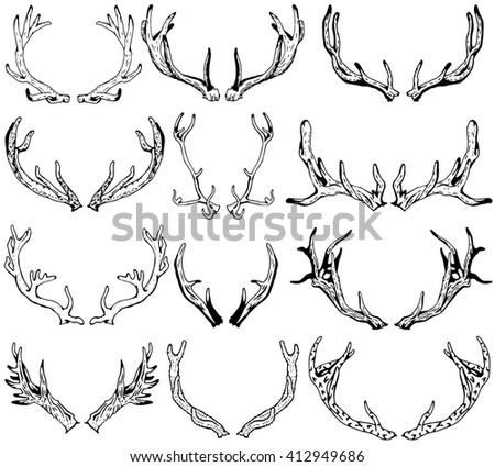 Black silhouettes of different deer horns - stock vector