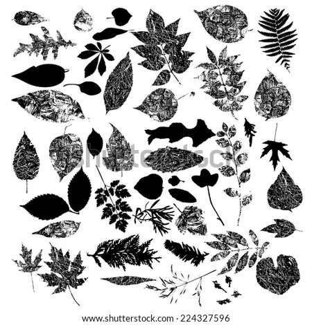Black silhouettes of foliage-vector set - stock vector