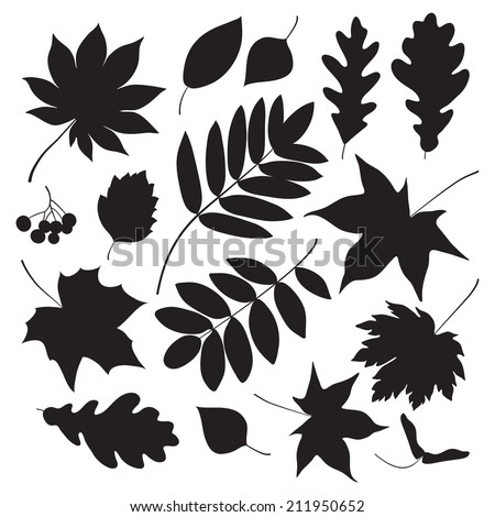 Black silhouettes of leaves. Vector illustration. - stock vector