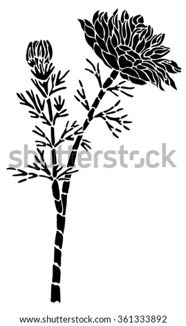 Black tattoo flower of Adonis on a white background - stock vector