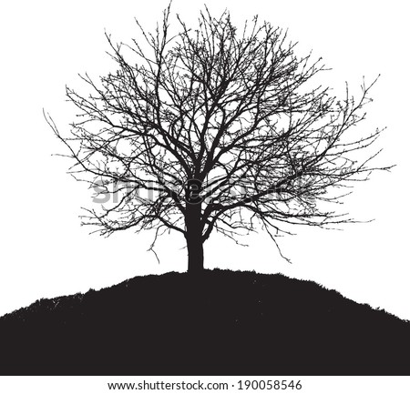 black tree silhouette - stock vector