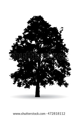 Black tree silhouettes  on white background,silhouette of trees,tree casts a shadow,Season tree with green leaves,set brightly green tree isolated,Tree Branch Silhouettes,Tree branch with green leaves